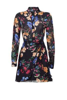 Black Sheer Ora Dress by Parker
