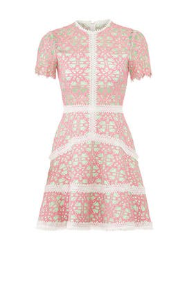 Pink Rustikan Dress by Alexis