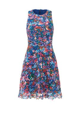 Confetti Flower Lace Dress by Nicole Miller