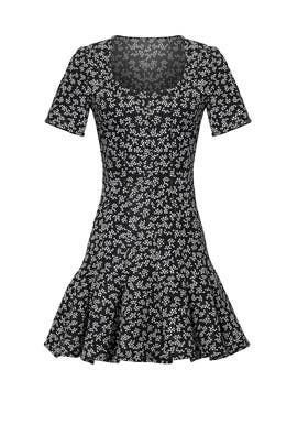 Greyscale Flare Dress by Carven