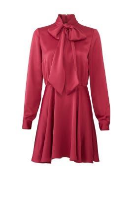 Boysenberry Jill Dress by Jay Godfrey