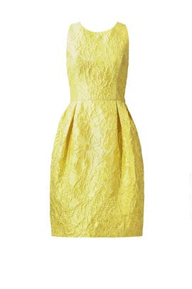 Lemon Floral Jacquard Dress by Carmen Marc Valvo