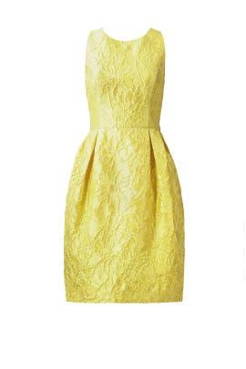Lemon Floral Jacquard Dress by Carmen Marc Valvo