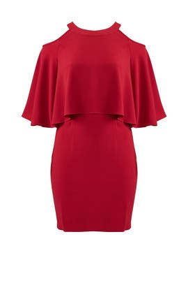 Adrianna Papell Cranberry Popover Dress