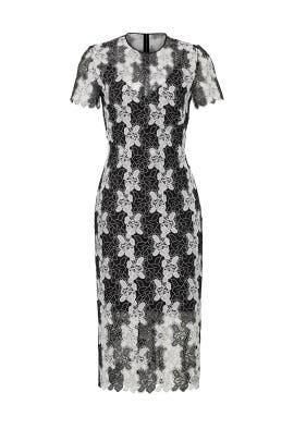 Black Print Lace Dress by Diane von Furstenberg