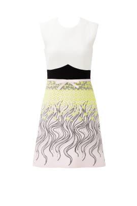 Retro Floral Dress by Giambattista Valli