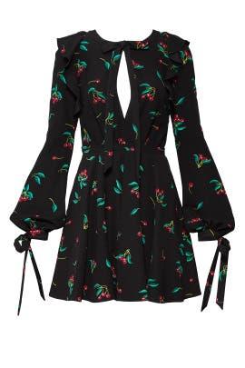 Black Cherry Dress by Philosophy di Lorenzo Serafini