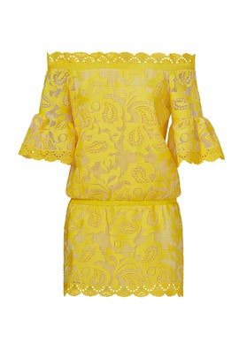 Yellow Lace Kit Dress by Alexis