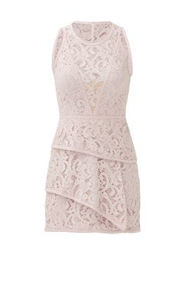 Blush Beverly Dress by BCBGMAXAZRIA