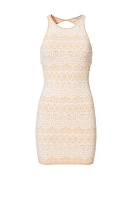 Peach Intarsia Knit Sheath by Ali & Jay