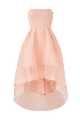 Elysian Dress by ELLIATT