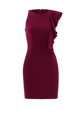 Plum Scott Dress by Jay Godfrey
