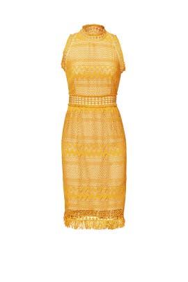 Cabrillo Lace Dress by Shoshanna