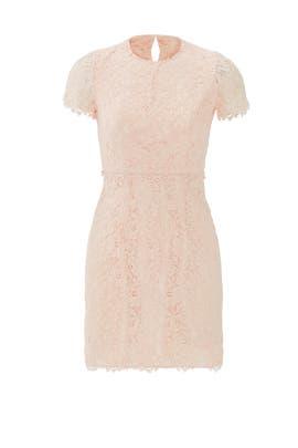 Petal Lace Valeria Dress by Shoshanna