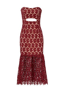 Burgundy Lace Sheath  by Slate & Willow