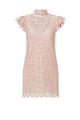 Blush Kara Lace Dress by Rachel Zoe