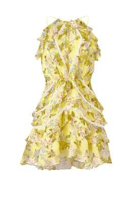 Floral Andrea Dress by Marissa Webb