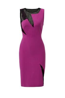 Maya Sheath by Versace Collection
