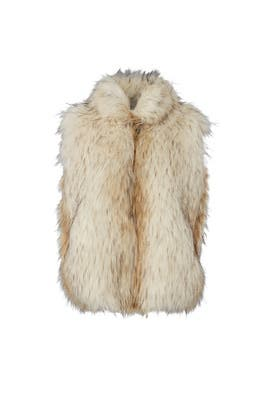 Elvan Faux Fur Vest by BB Dakota