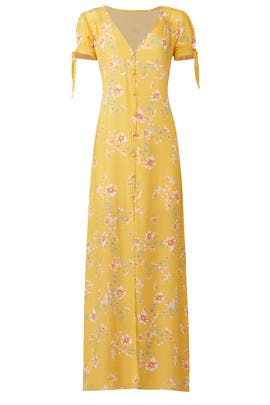 Touch Of Honey Ale Maxi by Flynn Skye