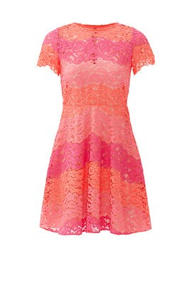 Pink Multi Rio Dress by Shoshanna