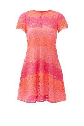 Pink Multi Rio Dress by Shoshanna