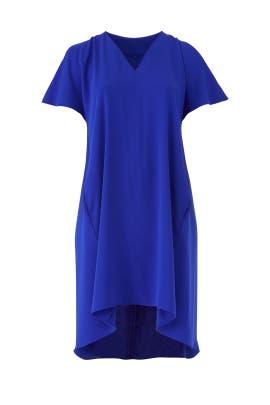 Blue Coretta Dress by Rachel Rachel Roy