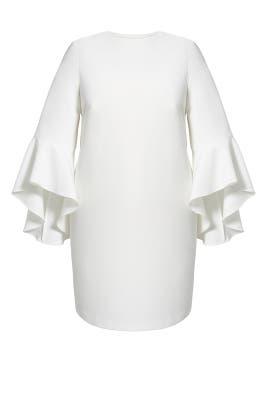 Ivory Flounce Sleeve Shift Dress by ELOQUII
