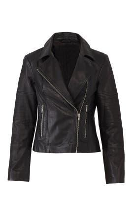 Wild One Leather Jacket by BB Dakota