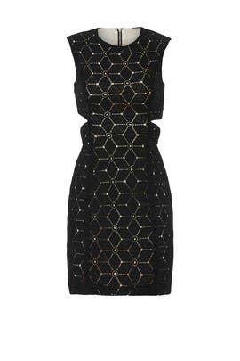 Embroidered Cut Out Sheath by Aijek