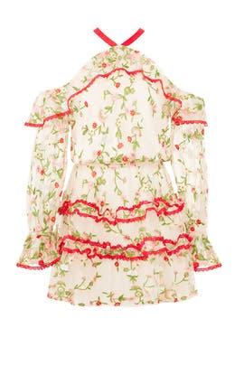 Ivory Floral Adeline Dress by Alexis
