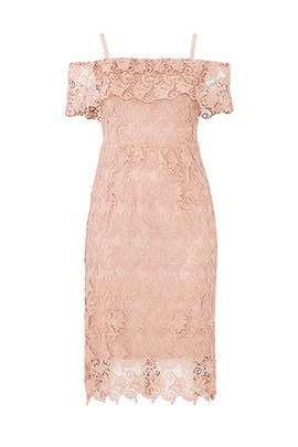 Ballet Pink Lace Sheath by City Chic