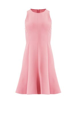 Pink Bristol Dress by Elizabeth and James