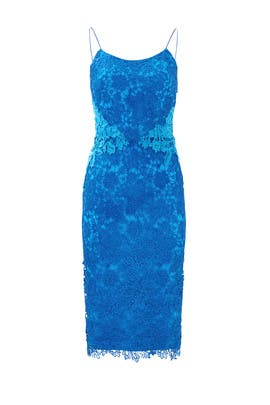 Blue Contrast Lace Sheath by ML Monique Lhuillier