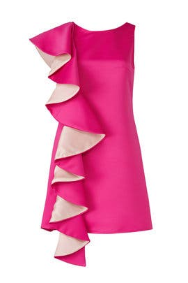 Pretty In Pink Dress by Viva Aviva