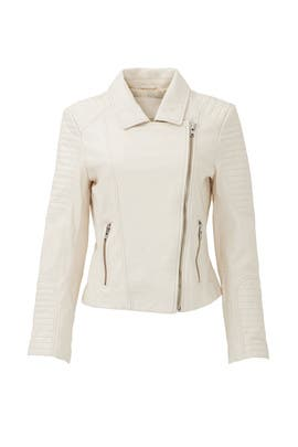 Cream Aviator Leather Jacket by BB Dakota