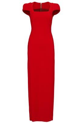 Rouge Sleek Zip Gown by Antonio Berardi