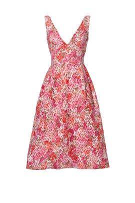Pink Multi Floral Dress by ML Monique Lhuillier