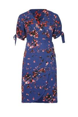 Violet Wrap Dress by Rachel Rachel Roy