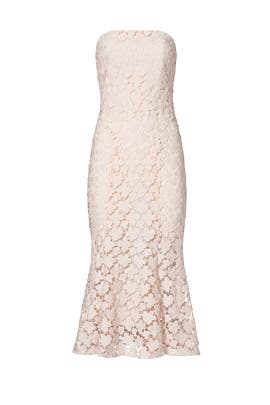 Blush Franklin Midi Dress by Shoshanna