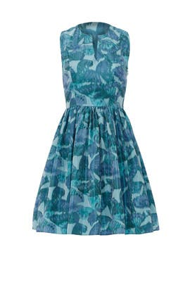 Lets Fly Away Dress by Thakoon