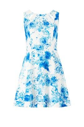 Floral Brenda Dress by Jay Godfrey