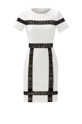 Bruna Lace Insert Dress by Raoul