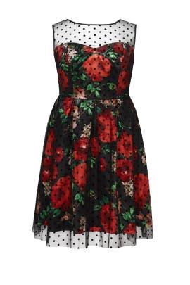 Romantic Rose Dot Dress by Slate & Willow