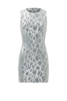 Silver Net Sheath by Elizabeth and James
