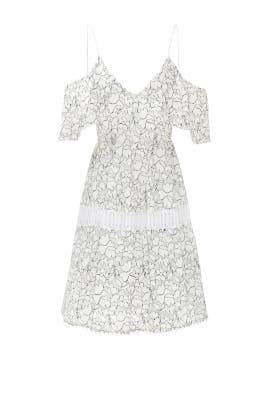 Basque Dress by Nicholas