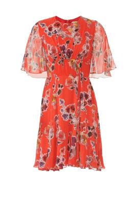 Chiffon Print Day Dress by Jason Wu
