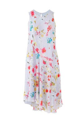 Flora Scarf Dress by Rachel Rachel Roy