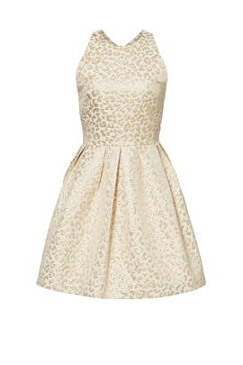 Gold Leopard Jacquard Dress by Hutch