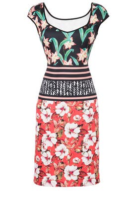 Floral Sunrise Sheath by Clover Canyon